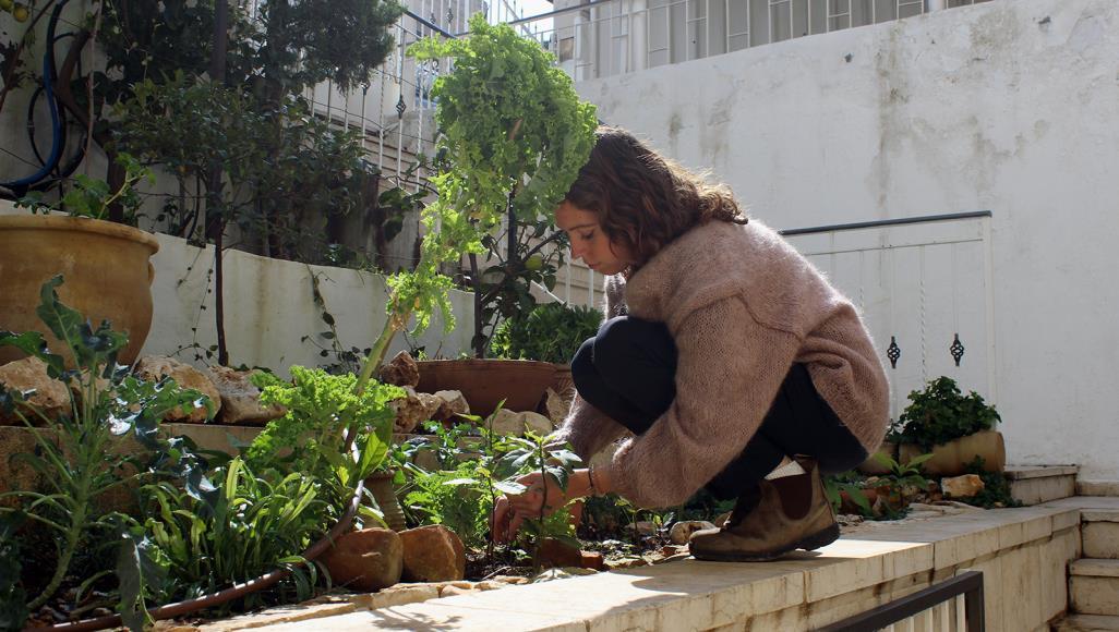 A Journey Towards Zero-Waste in Palestine